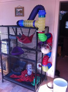 DIY Ferret Cage Idea #1