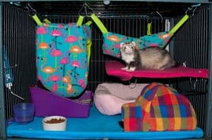 DIY Ferret Cage Idea #2