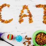 Word Cat made from cat food
