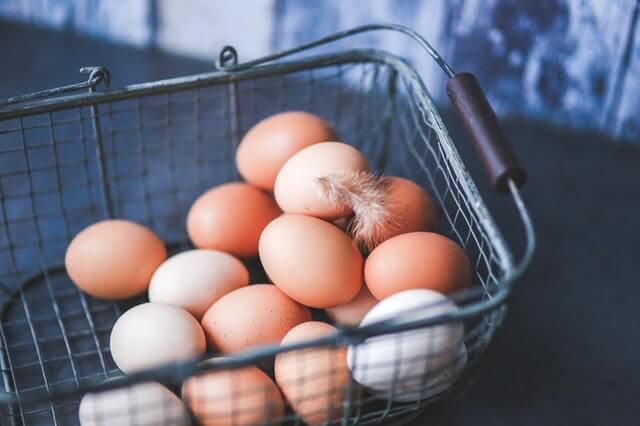 can ferrets eat scrambled eggs