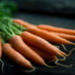 Can Ferrets Eat Carrots?