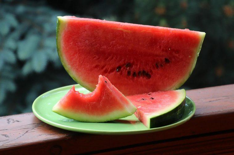 Can Ferrets Eat Watermelon?